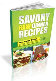 Savoury Raw Vegan Recipes